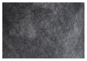 "90X60"" Rug - Dark Grey product photo"