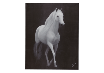 "40X50"" White Horse Painting product photo"