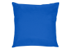 "17x17"" Decorative Pillow - Blue product photo"